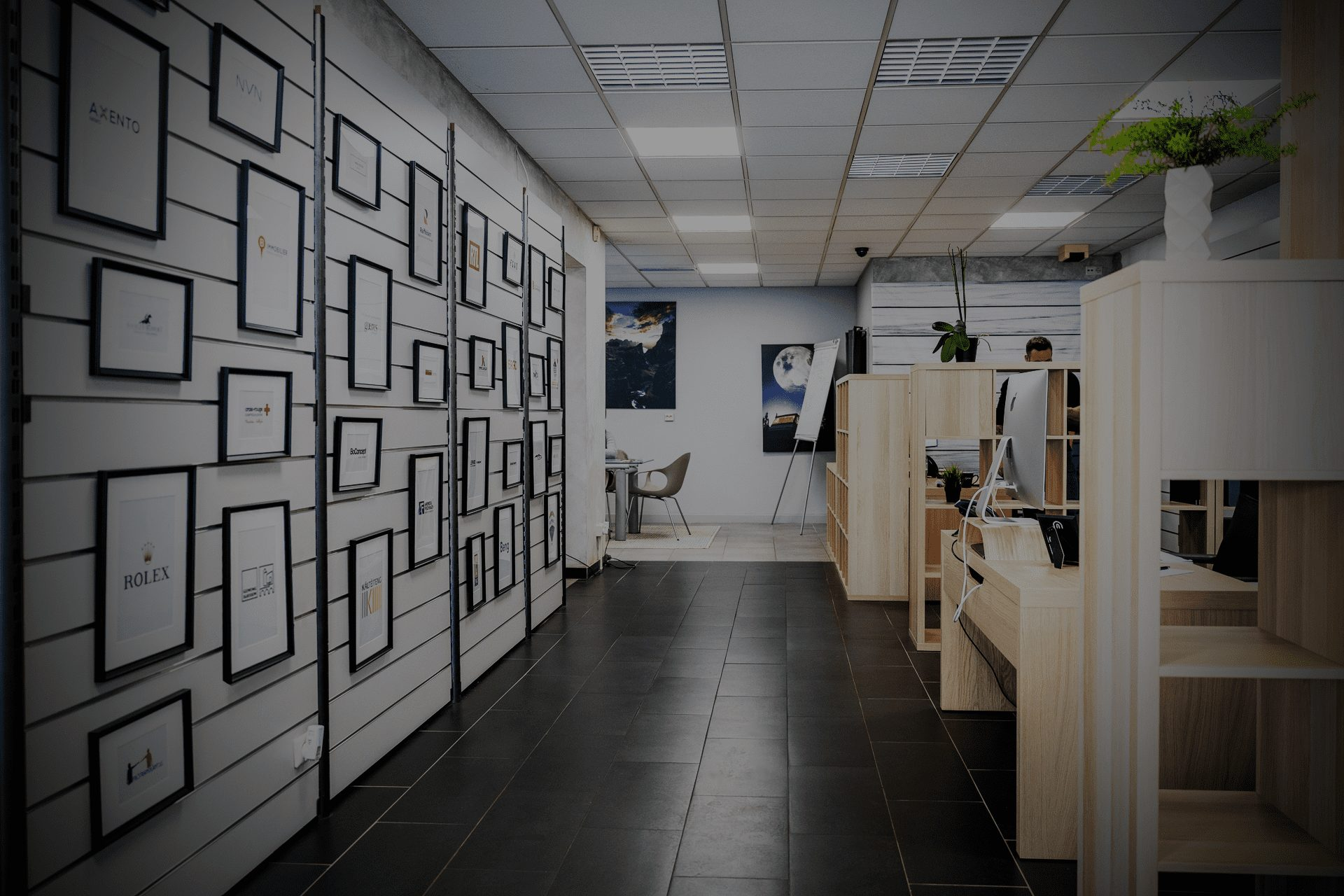 Gecko Creative agency inside view